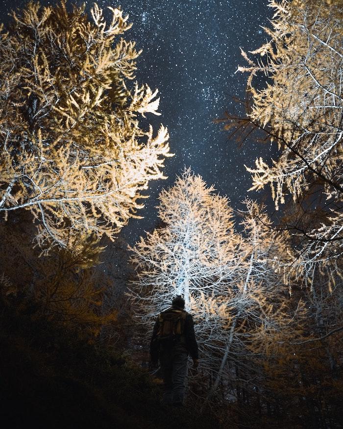 GoPro ISO - Nachthimmel im Wald mit Sterne, Belichtung