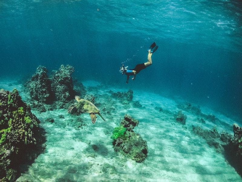 GoPro waterproof underwater